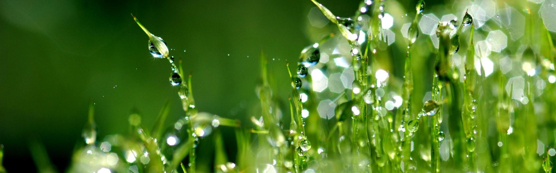 Prieskum životného prostredia